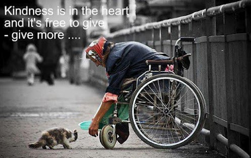 Kindness is in the heart and it's free to give - give more