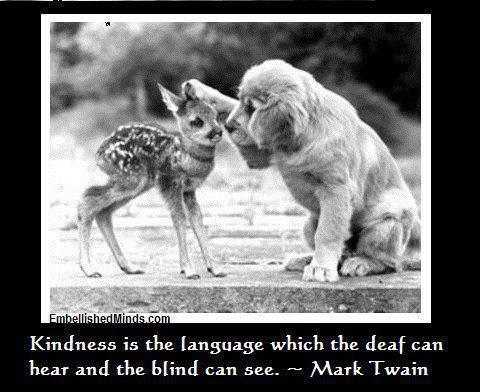 Kindness is the language which the deaf can hear and the blind can see