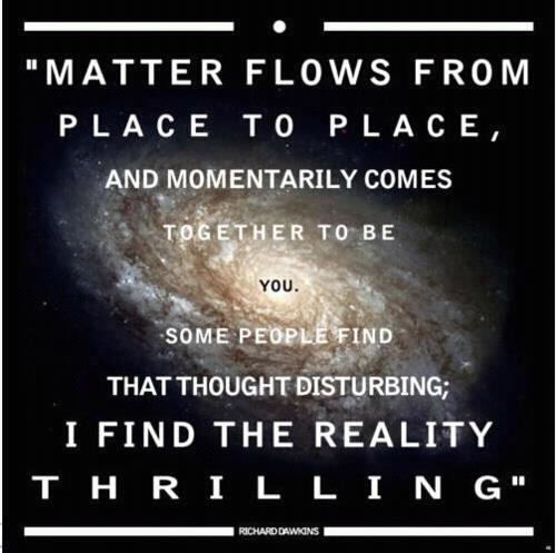 Matter flows from place to place, and momentarily comes together to be you. Some people find that thought disturbing; I find the reality thrilling.