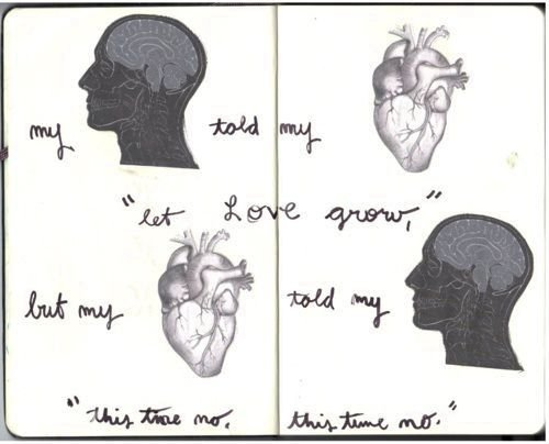 My brain told my heart 'let love grow' but my heart told my brain 'this time no, this time no'