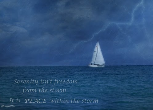 Serenity isn't freedom from the storm, It is peace within the storm