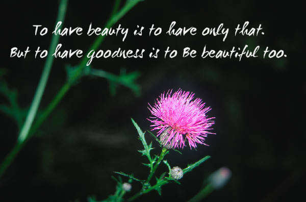 To have beauty is to have only that. But to have goodness is to be beautiful too