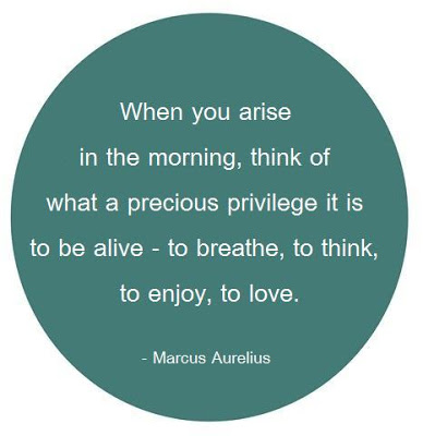 When you arise in the morning think of what a precious privilege it is to be alive-to breathe, to think, to enjoy,to love
