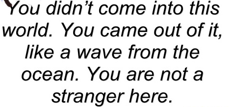 You didn't come into this world. You came out of it like a wave from the ocean.You are not a stranger here