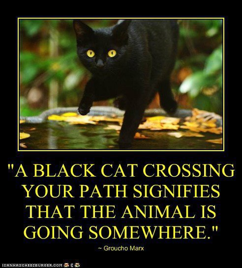 A black cat crossing your path signifies..