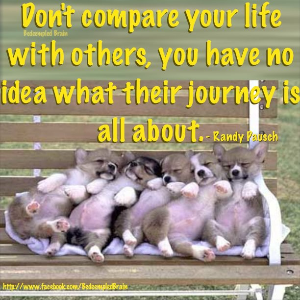 Don't compare your life with others, you have no idea what their journey is all about