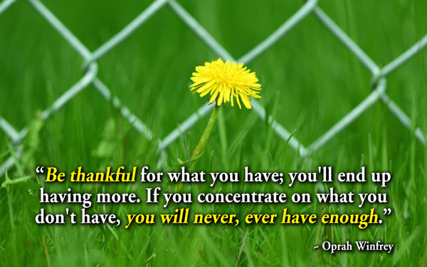 Be thankful for what you have; you'll end up having more.If you concentrate on what you don't have, you will never, ever have enough.